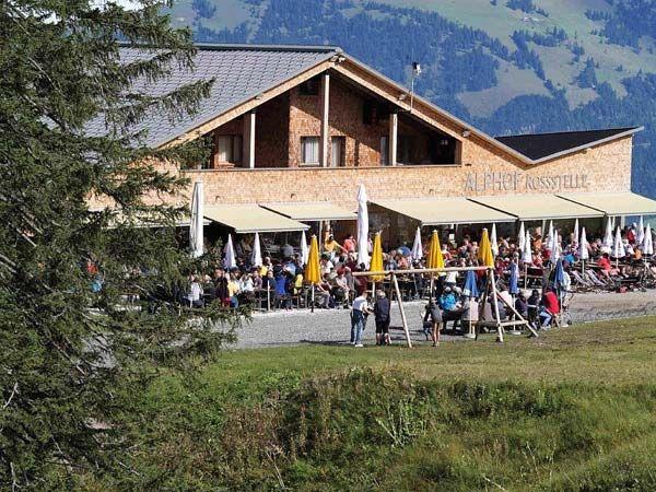 Alphof-Rossstelle-Sommer3
